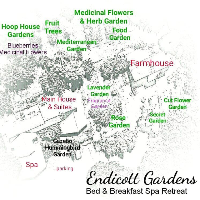 Explore our gardens and orchard!